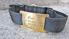 Custom pet ID quiet collar tag - Golden Vines