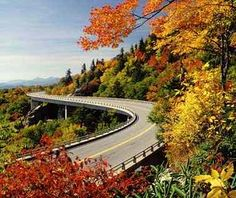 Blue Ridge Parkway, Carolinas and Virginia The nearly 500 miles of blacktop twisting through the Great Smoky Mountains and Shenandoah national parks was built for travelers seeking Appalachian overlooks. It's a panoramic drive for all seasons, with undulating slopes of color in autumn, a bounty of forest canopy in summer, and hot-cider ski resorts in winter. The parkway has become a paradise for birders: with 59 resident species, it boasts more diversity than the entire continent of Europe.