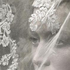 Lace Veils / Seaside Storm / Wedding Style Inspiration / LANE (instagram: the_lane)