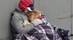 Petición · Un albergue para personas sin techo con animales en Madrid · Change.org