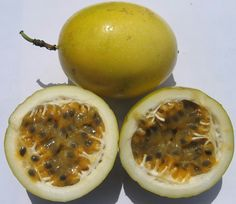Parcha fruit from Puerto Rico
