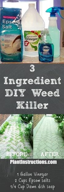 This DIY weed killer only uses 3 all natural ingredients and will eliminate all weeds within a few days! Super cheap to make and 100% safe! #GardenIdeas