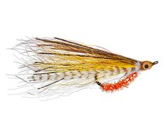 Fly Fishing Tips for Speckled Trout, Best Flies for Trout | Salt Water Sportsman