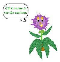 TickleMe Plant® - Tickle Me and I MOVE!