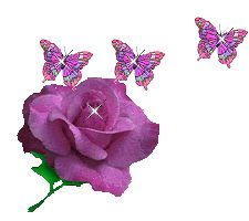 butterflies and purple rose
