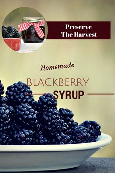 Preserve the Harvest Series: Blackberries and Canning Homemade Blackberry Syrup Perfect for my plain greek yogurt! Blackberry Syrup, Blackberry Recipes Without Seeds, Salsa Dulce, Canning Recipes, Freezer Recipes, Food Mills, Sweet Sauce, Along The Way, Fruits And Veggies