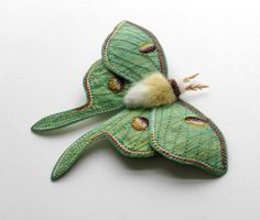 Luna Moth in a pretty pale green silk dupioni. Free motion embroidery on silk. Fabric Butterfly, Fabric Birds, Free Motion Embroidery, Embroidery Ideas, Needle Felting Tutorials, Insect Art, Clothes Crafts, Wool Applique, Wet Felting