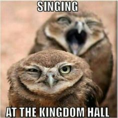 Sing out LOUD! Which is YOUR favorite of the newer Kingdom Songs?