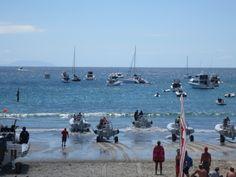Onetangi (pronounced oh-knee-tangee) beach races. Waiheke Island, Norfolk Island, Antarctica, Continents, Beautiful Beaches, New Zealand, Coastal, Scenery, Racing