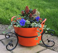 Orange Zest 15L Rainbow Trug planted with some Winter Colour with our unique Rainbow Trug stands www.rainbowtrugs.com Plant Containers, Container Plants, Colorful Plants, Orange Zest, Winter Colors, Farming, Laundry Room, Planter Pots, Rainbow