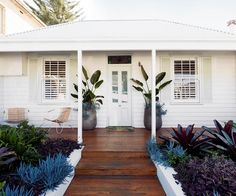 An old cottage in Sydney has been given new life with a contemporary garden of lush, layered plants. Old Cottage, Garden Cottage, Coastal Cottage, Exterior Colors, Exterior Design, Porche, Facade House, House Front, House Painting