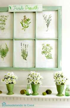 An old window becomes a picture frame for botanical prints