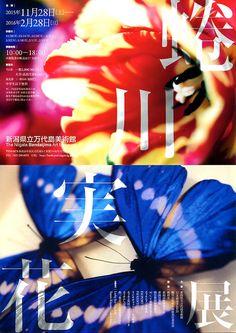 蜷川實花 花草 展覽 日本 T H O X T : Photo