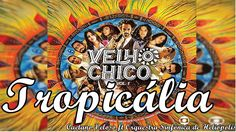 Tropicália - Caetano Veloso ft. Orquestra Sinfônica de Heliópolis   Velh...