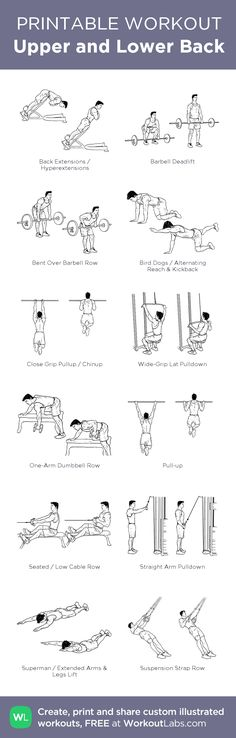 Upper and Lower Back: my visual workout created at WorkoutLabs.com • Click through to customize and download as a FREE PDF! #customworkout