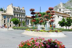 Sisteron ville fleurie - Alpes de Haute Provence....I was there last year. the flower display is amazing!