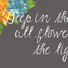 Lisa Congdon Art + Illustration » hand lettering & fonts