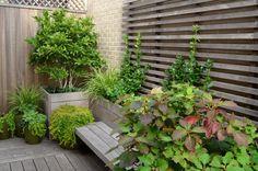 Abgrenzung-vor neugierigen Blicken-Gartenkübel Holz mit Pflanzen