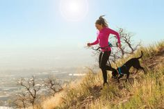 The best belt for running with your dog. Just attach any leash to the dog running belt to go hands free. Carries water bottle with a pocket for small items. Running Belt, Trail Running, Why I Run, Run With Me, Hiking Dogs, Runners High, Kayaking, Canoeing, Spartan Race