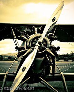 metallic  fine art vintage airplane photograph.
