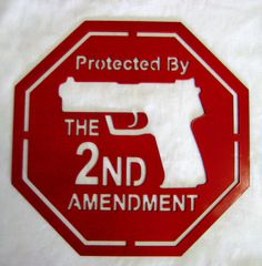 Protected by the Second Amendment Gun Home by LethalFabrication, $39.00