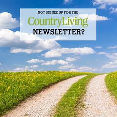Then you're missing out! Get the best in decorating ideas, down-home recipes, gardening tips, crafts, and all things country delivered straight to your inbox. Country Living Magazine, My Motto, Home Recipes, Gardening Tips, Decorating Ideas, Country Roads, Watch, Paper, Crafts