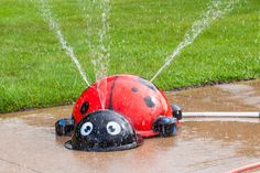 My Portable Splash Pad Ladybug, just attach a garden hose to this mobile splash pad. Pick this splash pad up and put it in the car to take it to grandma's house, on vacation or to a birthday party. Fun, Mobile and cute!