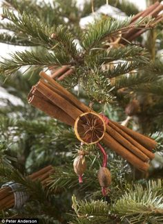 christmas tree nature theme ideas | Green Christmas: Home-made decorations and wrapping | Mail Online