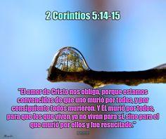 """- 2 Corintios 5:14-15 - """"El amor de Cristo nos obliga, porque estamos convencidos de que uno murió por todos, y por consiguiente todos murieron. Y ÉL murió por todos, para que los que viven ya no vivan para sí, sino para el que murió por ellos y fue resucitado."""""""