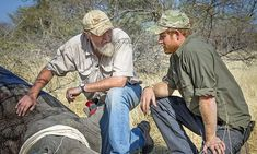 Prince Harry makes solo private wildlife conservation visit to Africa