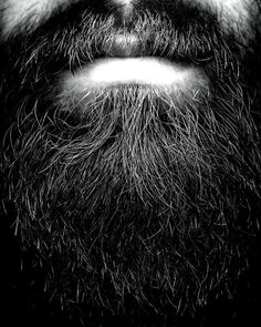 just had to pin it for how often do you find a photo like this?mmmm beards....