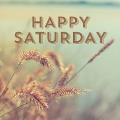 May you have a Happy Saturday!!