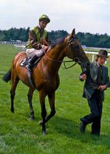 Bustino(1971)(Colt)Busted- Ship Yard By Doutelle. 5x5 To Solario. 9 Starts 5 Wins 3 Seconds 1 Third. $335,030. Won Coronation Cup(Eng-1), St Leger S(Eng-1), Great Voltigeur S(Eng-2), Derby Trial S(Eng-3), Classic Trial S(Eng-3), 2nd King George VI & Queen Elizabeth S(Eng-1), Grand Prix De Paris(Fr-1), Acomb S(Eng-L).