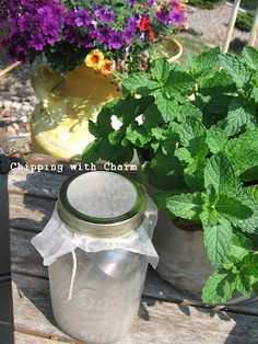 Canning Jars turned into solar lights - what a bright idea!