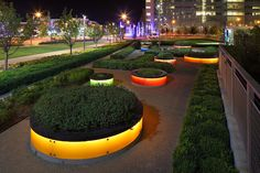"outdoor string light ""livingston park"" - Google Search"
