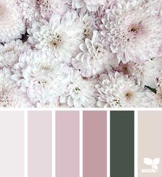 { flora tones } | image via: @chrismoon1969 #colorpalette #color #colorscheme