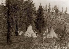 Here for your consideration is an old picture of Indian Tipis in the Mountains. It was created in 1910 by Edward S. Curtis.    The photograph presents a Tipis and a tent under trees; hill in background.    We have created this collection of illustrations primarily to serve as a valuable educational tool. Contact curator@old-picture.com.