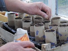 Now's the time to start your seeds! These containers can be found around your home --> http://www.hgtvgardens.com/garden-basics/how-to-use-seed-starting-containers-found-at-home?soc=pinterest