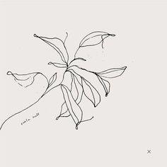 Botanical Illustration by Viola Hill Studio Floral Illustrations, Botanical Illustration, Illustration Art, Inspiration Logo Design, Design Ideas, Simple Line Drawings, Plant Drawing, Line Tattoos, Typography Prints