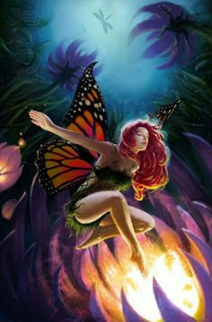 Fairy - butterfly wings in the night.