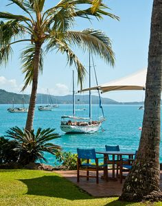 Sailing to the islands of the South Pacific Ocean - Caledonia - Visit… Places To Travel, Places To See, Travel Destinations, Tasmania, Australia Travel, Queensland Australia, Australia Beach, Coast Australia, Airlie Beach