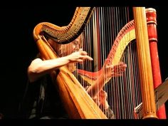 Harp Jokes poke fun at the instrument that is cumbersome and aggravating to move around. The players have their own ridiculous niche.