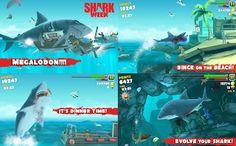 Shark Games, Android, Shark Week, Windows Phone, Live Wallpapers, Sharks, Evolution, Crossy Road, Technology