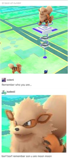 New PokeMon on - Funny Pokemon - Funny Pokemon meme - - //// growlithe arcanine pokemon go lion king reference borf borf moon moon The post New PokeMon on appeared first on Gag Dad. Pokemon Pins, Pokemon Comics, Pokemon Funny, Pokemon Memes, New Pokemon, Pokemon Fusion, Pokemon Pictures, Funny Pictures, Otaku