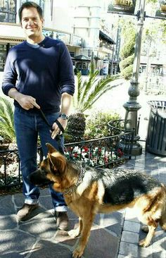 Michael Weatherly and one of his German Shepherds.