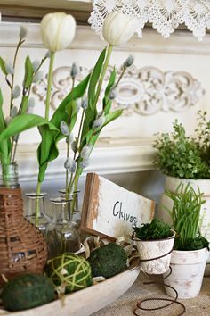 Easter vignette herbs chives farmhouse spring decor neutral spring with green