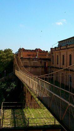 Ponte Pensil Salto