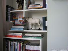 livros e enfeites