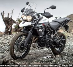 Triumph Tiger 800 XC - Google Search