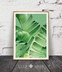 Banana Leaf Print, tropisch Decor Plant, botanische, tropische Wall Art Decor, afdrukbare kunst, Sage Green, Plant fotografie, groene bladeren